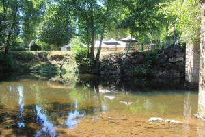 Camping d'Auberoche - Photo 39
