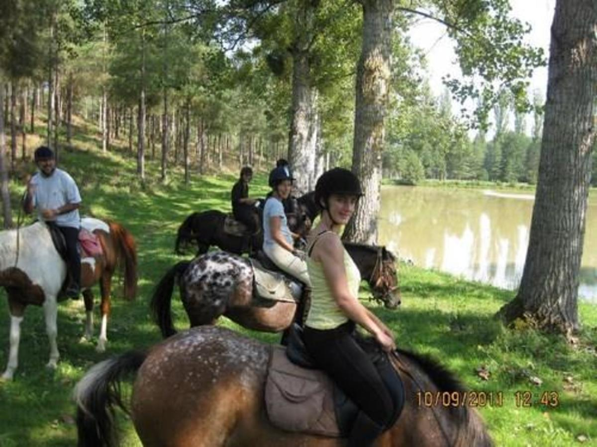 Camping de Civray - Photo 45