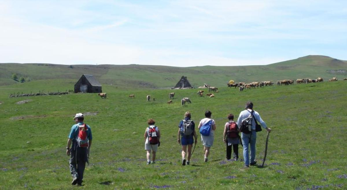 Village de Vacances Aux Portes des Monts d'Aubrac - Photo 10
