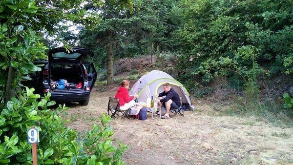 Aire naturelle de Camping La Ferme aux Cerisiers - Photo 3