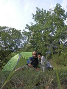 Aire naturelle de Camping La Ferme aux Cerisiers - Photo 19