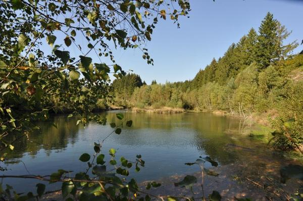 Camping Floreal Gossaimont - Photo 8