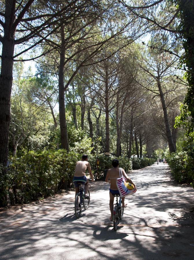 Camping Campo dei Fiori - Photo 5
