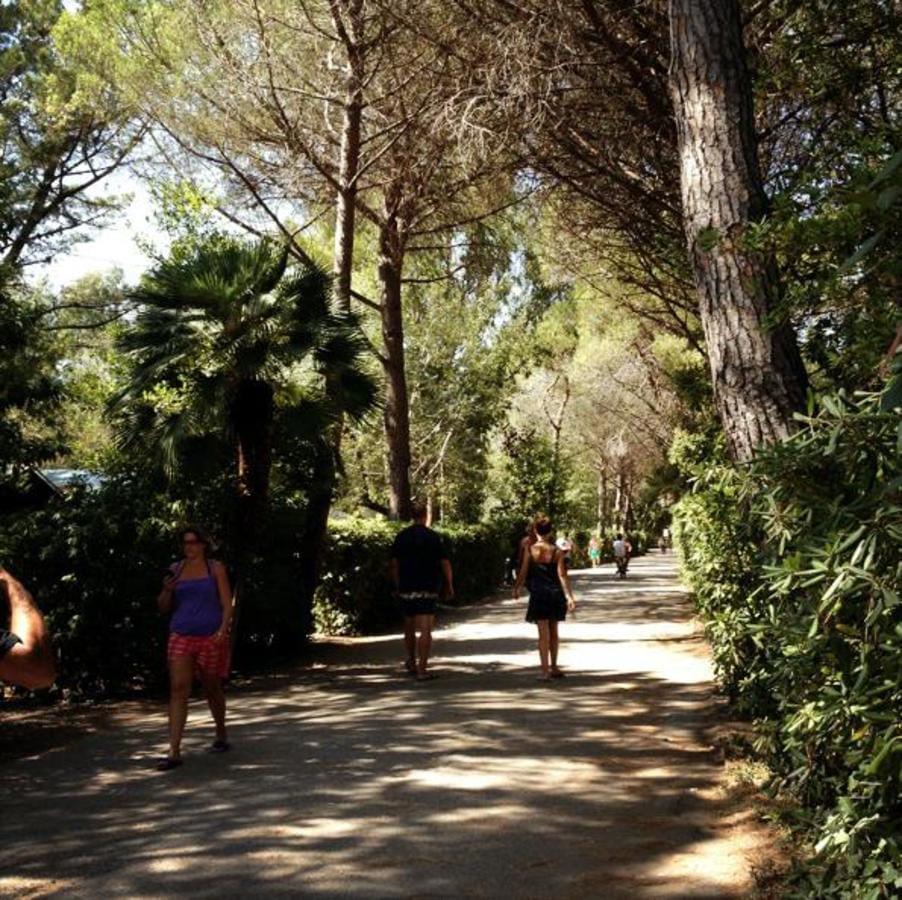 Camping Campo dei Fiori - Photo 7
