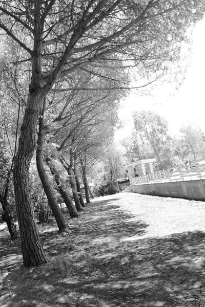 Camping Campo dei Fiori - Photo 9