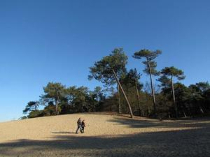 Camping Fortduinen - Photo 18