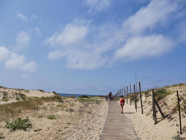 Siblu – Les Dunes de Contis - Photo 106