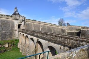Sites et Paysages La Rivière Fleurie - Photo 35
