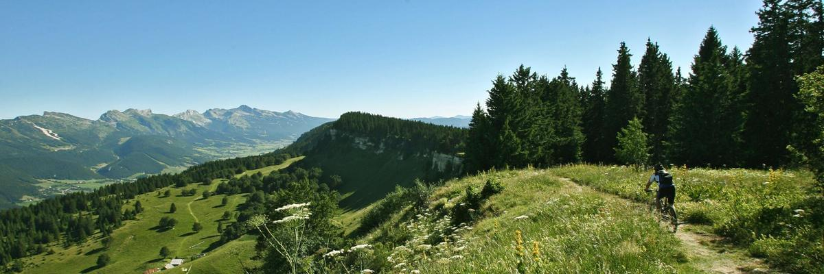 Camping Le Vercors - Photo 39