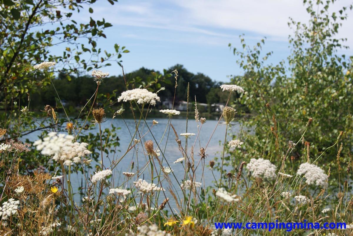 Flower Camping Les Étangs Mina*** - Photo 7