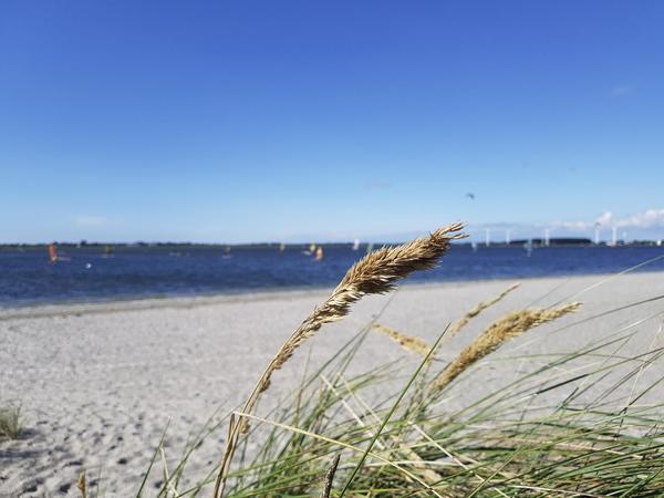 Camping- und Ferienpark Wulfener Hals - Photo 7