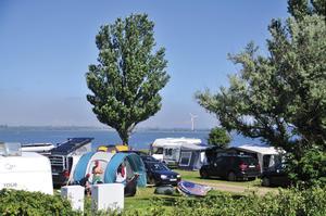 Camping- und Ferienpark Wulfener Hals - Photo 19