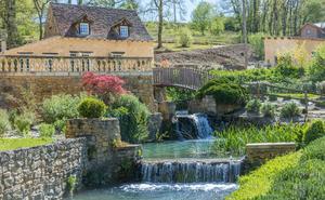 Le Moulin de Surier - Photo 10