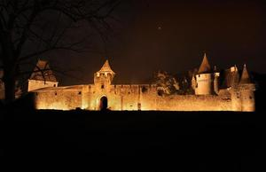 Le Moulin de Surier - Photo 52