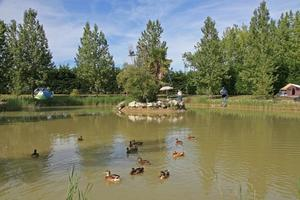 Domaine Le Jardin du Marais - Photo 15