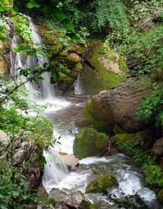 Berga Resort - The mountain and wellness center - Photo 45