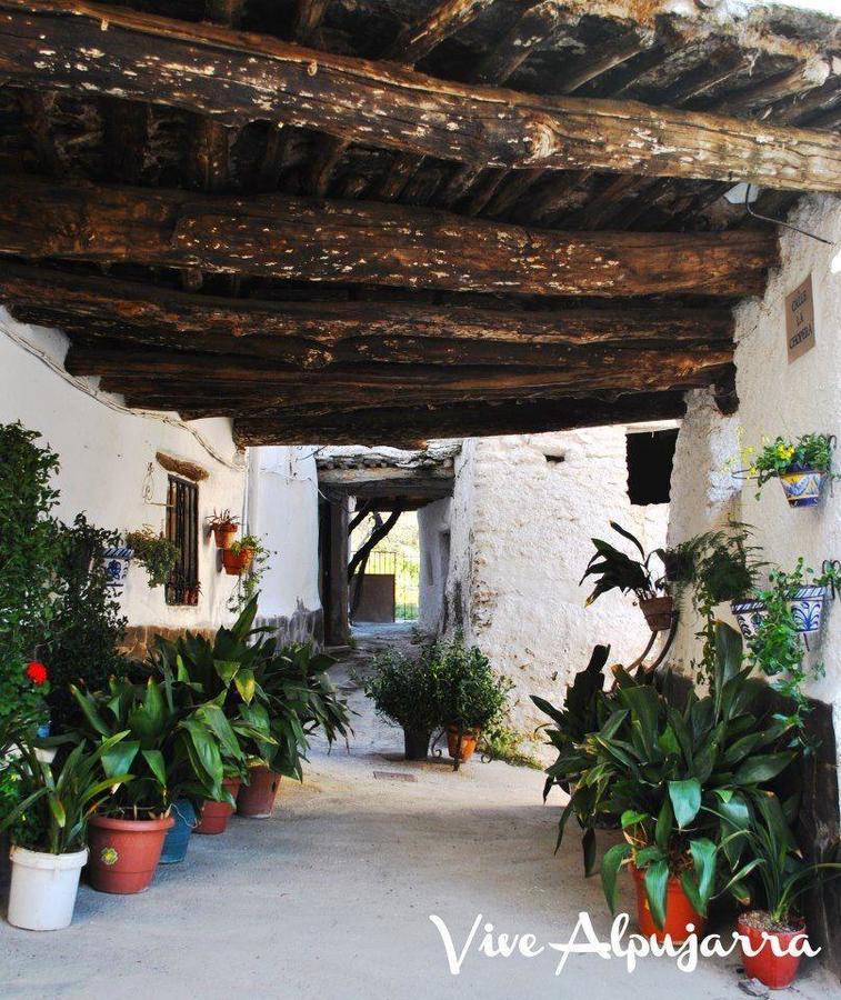 Camping Balcon de Pitres - Photo 31