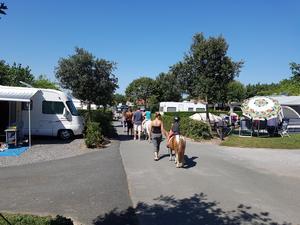 Camping UR-ONEA - Photo 40