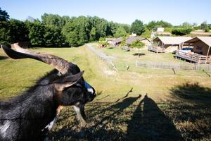 Camping Village de La Guyonnière - Photo 192