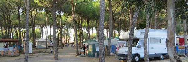 Villaggio Camping Lungomare - Photo 6