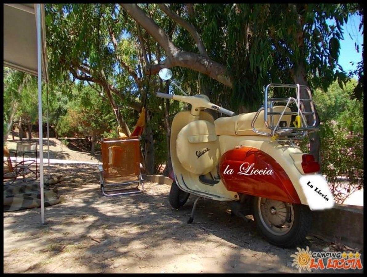 Camping La Liccia - Photo 3
