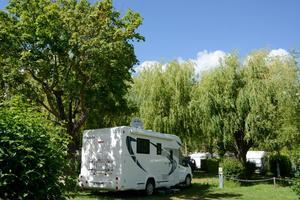 Camping L'Oasis du Verdon - Photo 8