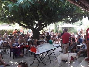 Camping L'Oasis du Verdon - Photo 20