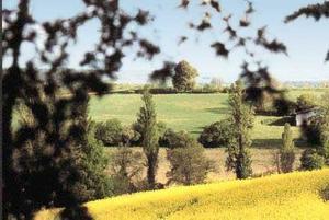 Camping l'Anjou - Photo 27