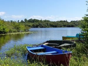 Le Lac Camping - Club - Photo 4
