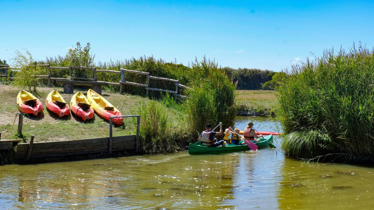 Camping Village de La Guyonnière - Photo 1008
