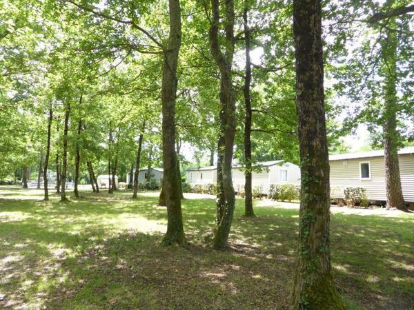 Camping Les Chèvrefeuilles - Photo 9