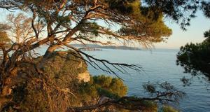Camping Clair de Lune - Photo 23