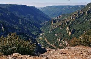 Domaine Aigoual Cévennes - Photo 27