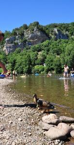 Camping De LA PLAGE à St Cirq Lapopie - Photo 12