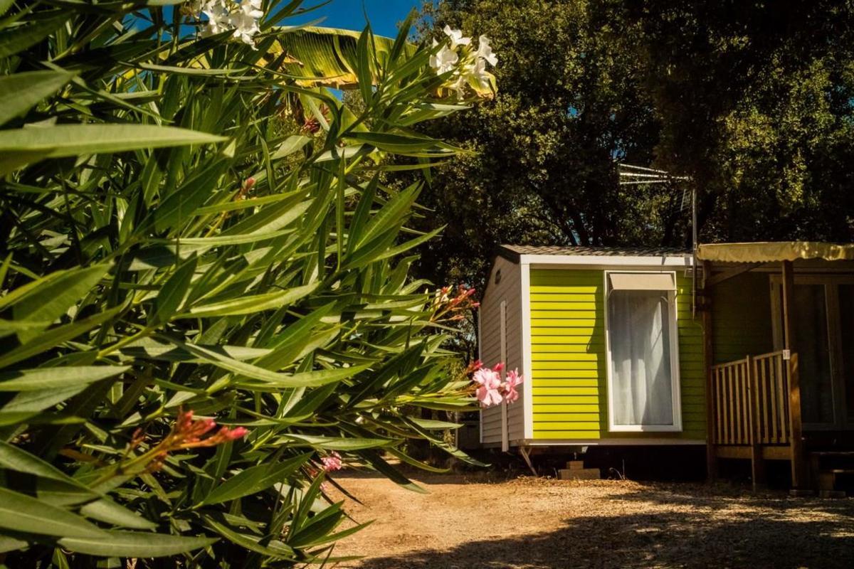 Flower Camping Domaine de Gajan - Photo 3