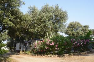 Flower Camping Domaine de Gajan - Photo 7