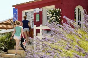 Flower Camping Domaine de Gajan - Photo 9