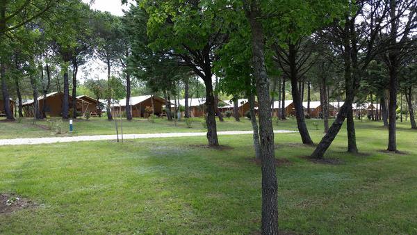 Camping Lac de Thoux St-Cricq - Photo 10