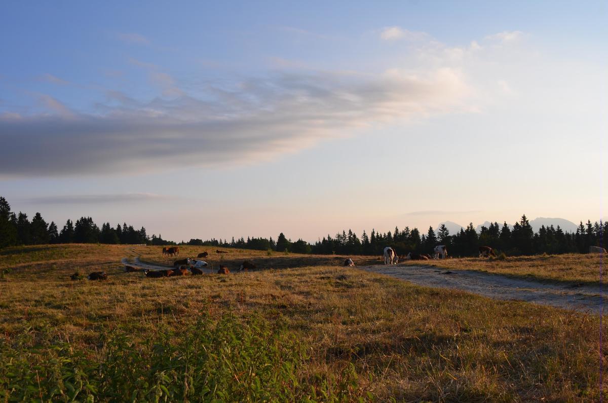 Camping Les Eymes - Photo 19
