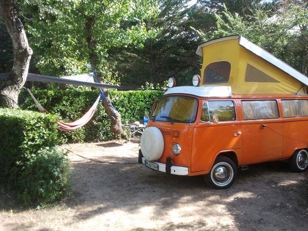 Camping la Forêt - Photo 3