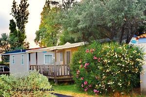 Camping Crin Blanc - Photo 2