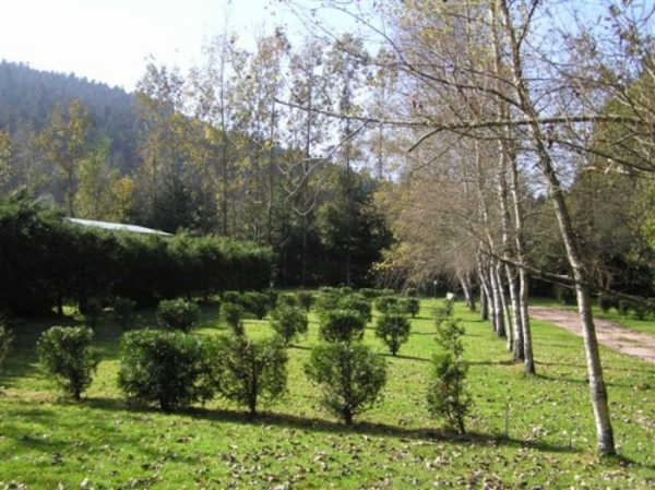 CAMPING LES GRANGES BAS - Photo 4