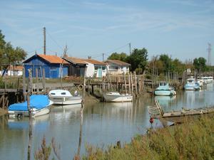 Camping APV L'Anse des Pins - Photo 1299