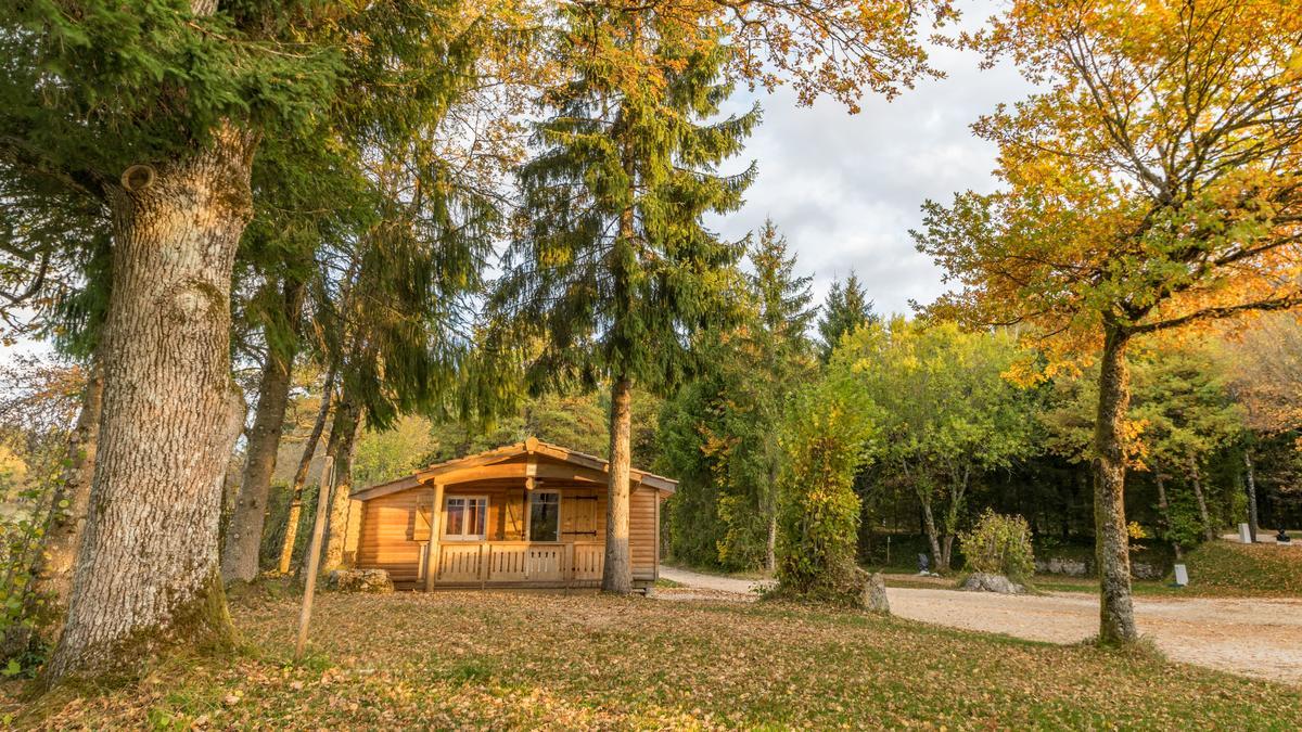 Camping de la Forêt - Photo 7