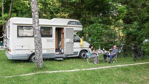 Camping de la Forêt - Photo 8