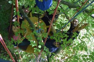 Camping de la Forêt - Photo 21