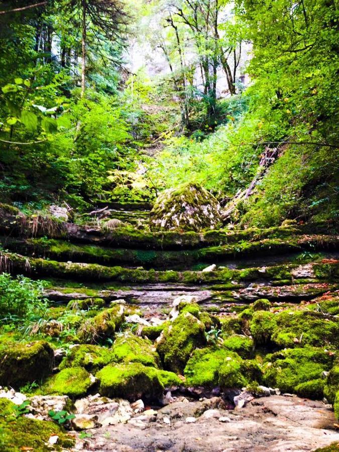 Camping de la Forêt - Photo 46