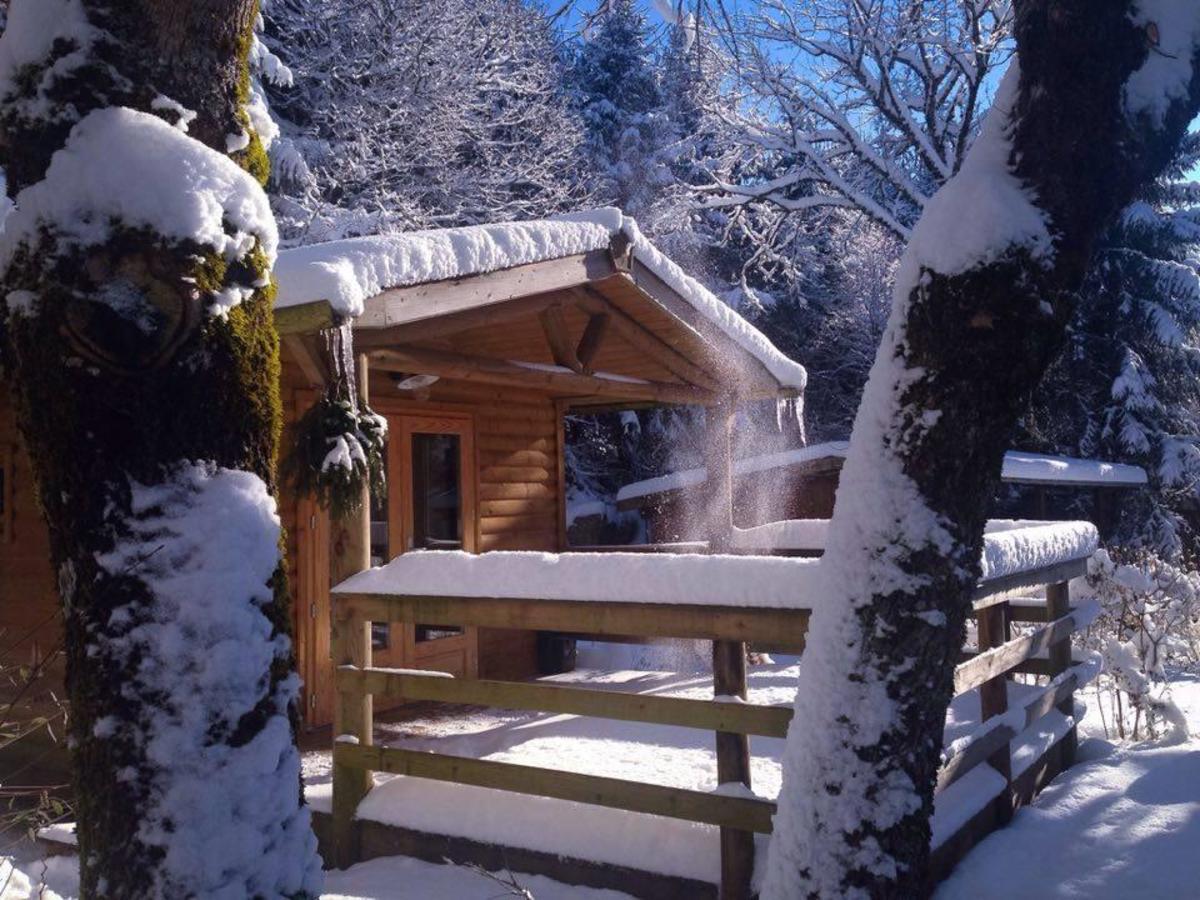 Camping de la Forêt - Photo 54
