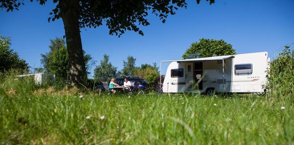 Les Castels Les Bois du Bardelet - Photo 2