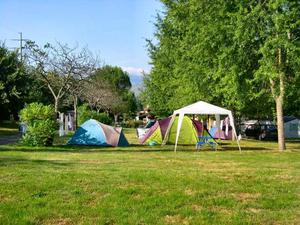Camping LE MOULIN DU MONGE - Photo 3